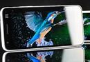 超过iPhone5 中兴Grand S屏幕测试