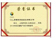 2013年中国音视频产业应用创新奖-永恒战士2