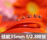 佳能EF-S 35mm f/2.8官方样张