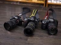相机市场一骑绝尘 佳能关注占比三成