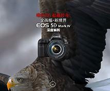 EOS 5D Mark IV解析