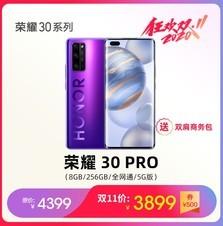 荣耀 30 Pro(8GB/256GB/全网通/5G版)