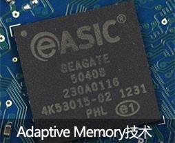 Adaptive Memory