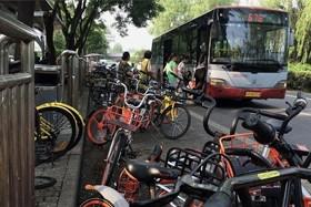 北京暂停新增共享单车 拒绝铺量
