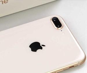 苹果iPhone 8 Plus评测 拍照才是真亮点