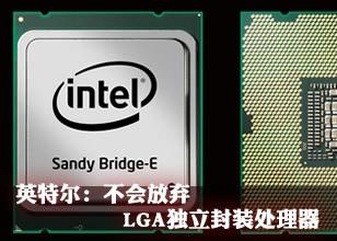 英特尔:不会放弃LGA独立封装处理器