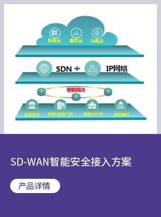 SD-WAN智能安全接入方案