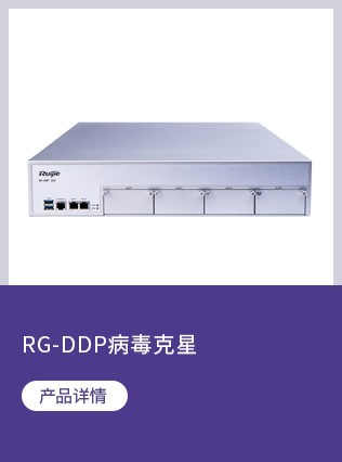 RG-DDP病毒克星