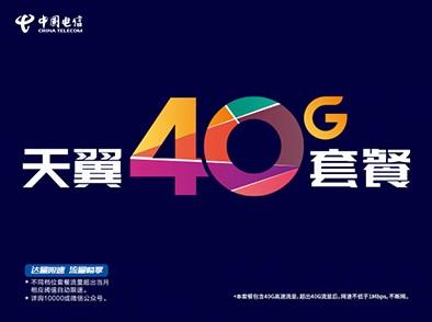 <b>中国电信最佳运营商资费套餐</b>评委会意见