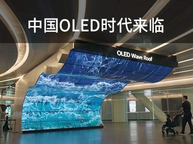<b>LG Display CSO面板技术</b>评委会意见