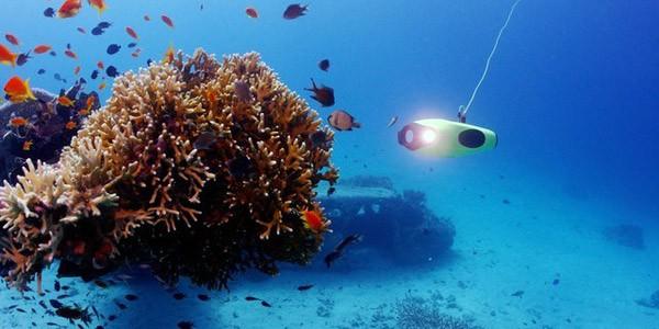 鳍源张翀:打造全新的水下拍摄体验