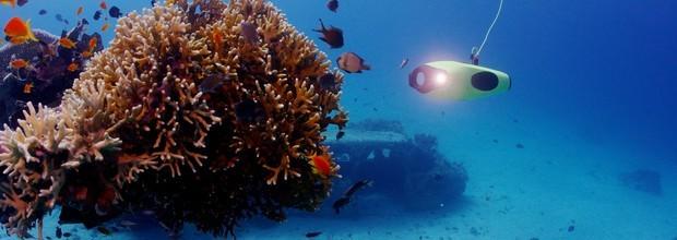 智能影像拍摄打造水下全新体验